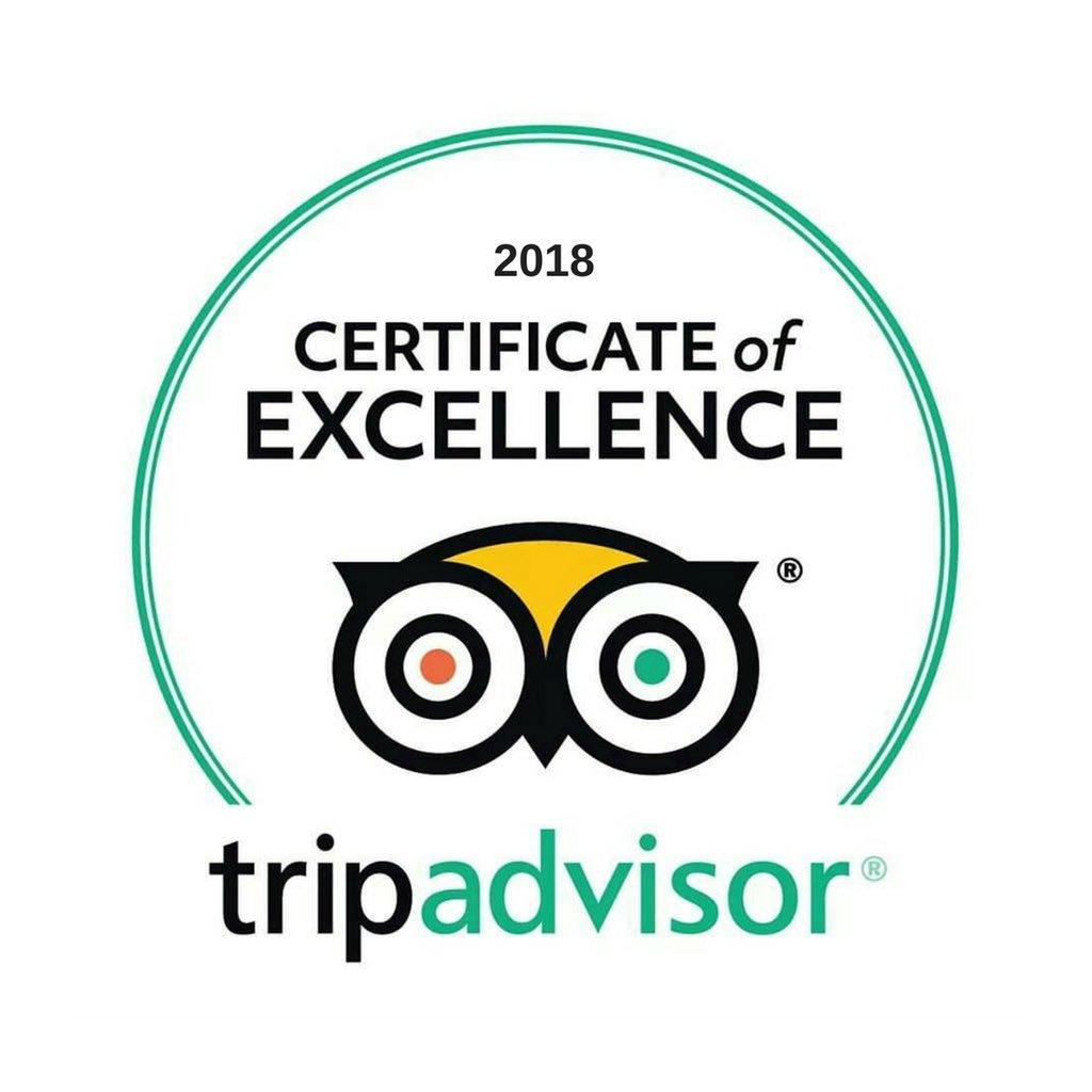 TripAdvisor Conil, El palmar , Andalusien, Surfen